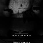 VIOLENZA DOMESTICA, Paolo Gamerro